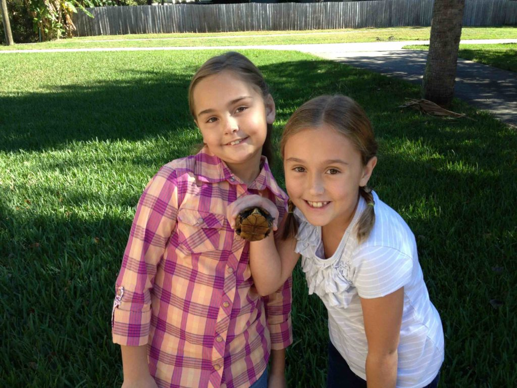 Addie and Kylie found a turtle during a family play outing.